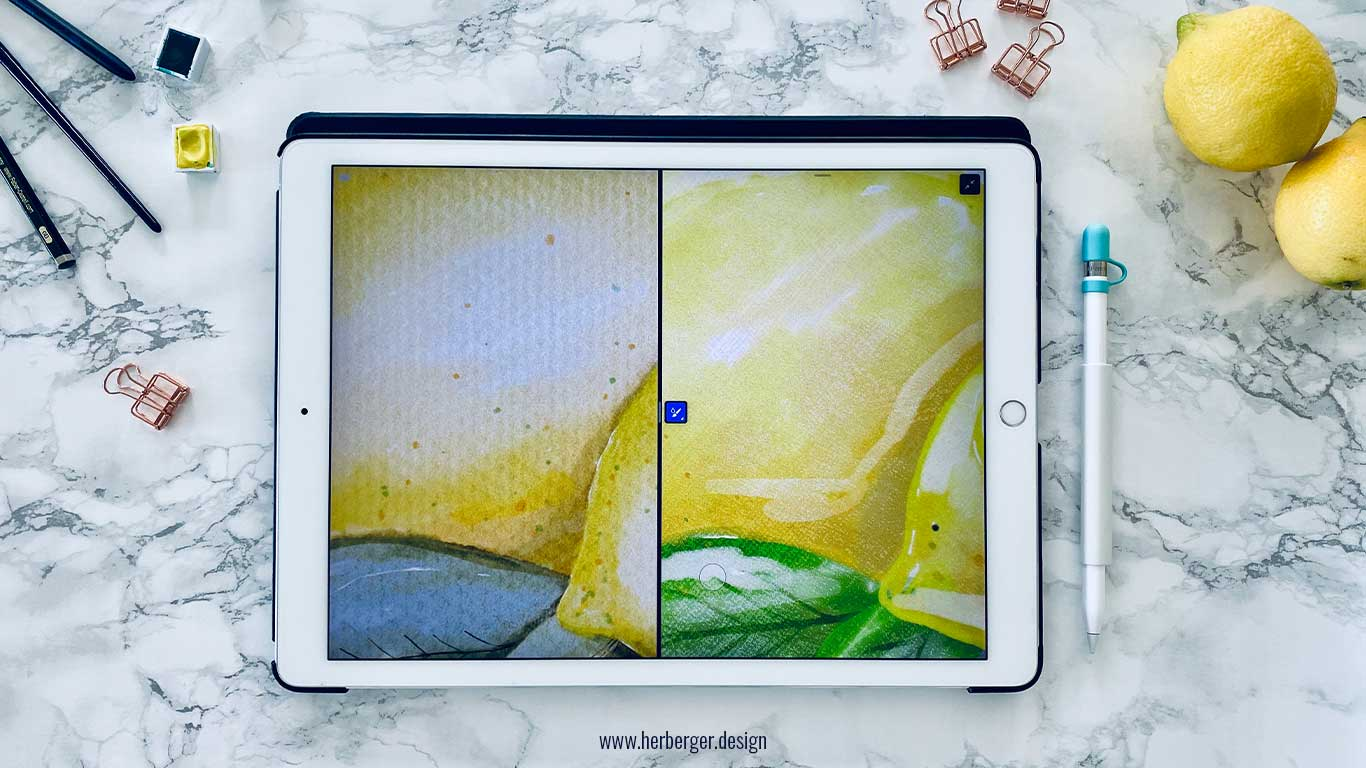 Procreate und Adobe Fresco im Vergleich Details